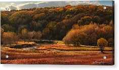 Prairie Autumn Stream No.2 Acrylic Print by Bruce Morrison