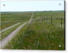 Prairie Acrylic Print by Ellen  Leigh