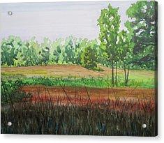 Prairie Grass Field Acrylic Print by Bethany Lee