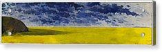 Prairie Grouper Panorama Acrylic Print by Martin Tielli
