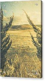 Prairie Hill Acrylic Print by Jorgo Photography - Wall Art Gallery