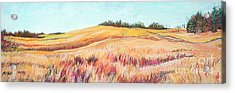 Prairie IIi Acrylic Print by Lucinda  Hansen