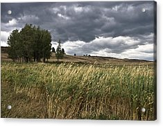 Prairie, Lost Trail Wildlife Refuge Acrylic Print