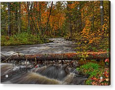 Prairie River Tree Crossing Acrylic Print