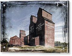 Prairie Sentinels II Acrylic Print