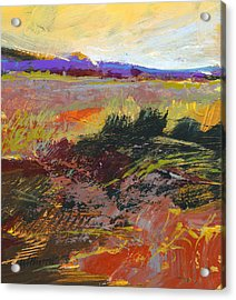 Prarie Sketch Acrylic Print by Dale  Witherow