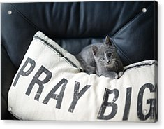 Acrylic Print featuring the photograph Pray Big by Linda Mishler