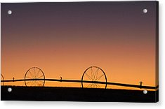 Pre-dawn Orange Sky Acrylic Print