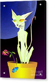 Precious The Cat Acrylic Print