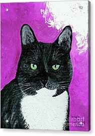 Acrylic Print featuring the painting Precious The Kitty by Ania M Milo