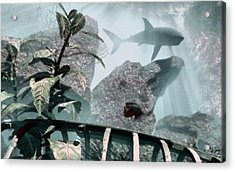 Predator Acrylic Print by Richard Rizzo