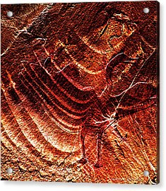 Prehistoric Bird Acrylic Print by Asok Mukhopadhyay