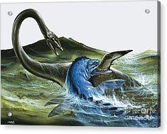 Prehistoric Creatures Acrylic Print