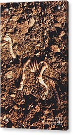Prehistoric Diplodocus Bones Acrylic Print