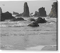 Prehistoric Shore Acrylic Print