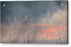 Prescribed Burn 4 - Uw Arboretum - Madison - Wisconsin Acrylic Print by Steven Ralser