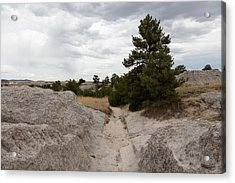 Preserved Wagon Ruts Of The Oregon Trail On The North Platte River Acrylic Print by Carol M Highsmith