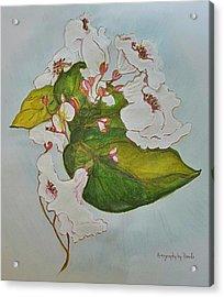 Pretender Orchid Acrylic Print