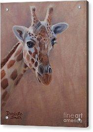 Pretty Eyes - Giraffe Acrylic Print by Danielle Smith