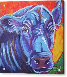 Pretty Face Cow Acrylic Print by Jenn Cunningham