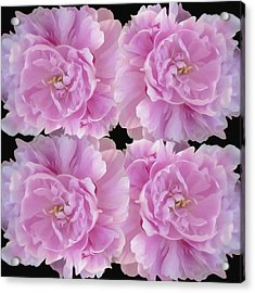 Acrylic Print featuring the photograph Pretty In Pink by Linda Constant