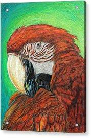 Pretty In Red Acrylic Print by Angela Finney