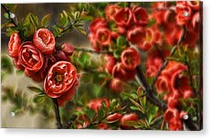 Pretty In Red Acrylic Print