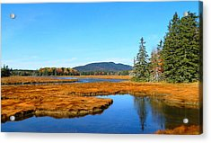 Pretty Marsh Acrylic Print