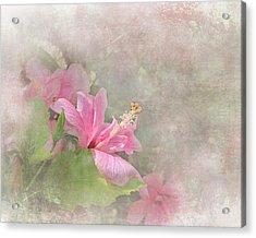 Pretty Pink Hibiscus Acrylic Print