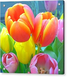 Pretty #spring #tulips Make Me Smile Acrylic Print