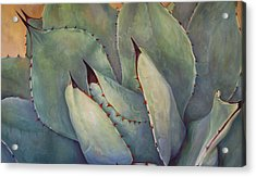 Prickly 2 Acrylic Print by Athena Mantle