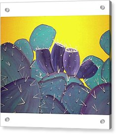 Prickly Pear With Acrylic Print