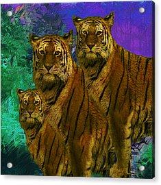 Pride Acrylic Print by Jack Zulli