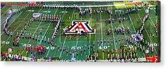 Pride Of Arizona Acrylic Print by Stephen Farley