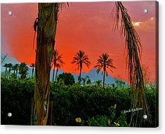 Primary Desert Sunset Acrylic Print by Jack Eadon