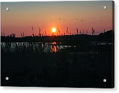 Primehook Sunset Acrylic Print by See Me Beautiful Photography