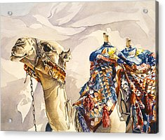 Prince Of The Desert Acrylic Print by Beth Kantor