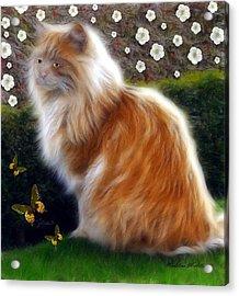 Princess Sheba  Acrylic Print by Madeline  Allen - SmudgeArt