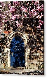 Princeton University Door And Magnolia Acrylic Print by Olivier Le Queinec