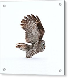 Proceed To Runway For Take Off Acrylic Print