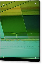 Proleb Acrylic Print