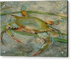 Propa Blue Crab Acrylic Print by Sibby S