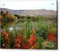 Prosser Autumn River With Hills Acrylic Print by Carol Groenen