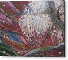 Protea Scent Acrylic Print by Penny Faulhammer