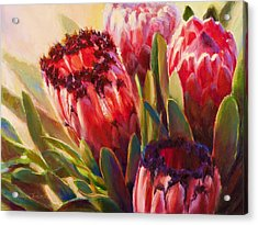 Acrylic Print featuring the painting Protea - Tropical Flowers From Hawaii by Karen Whitworth