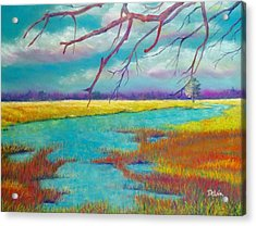 Protect The Wetlands Acrylic Print