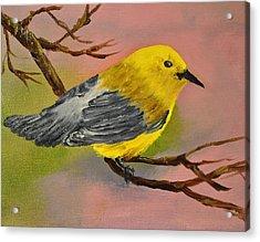 Prothonotory Warbler Acrylic Print