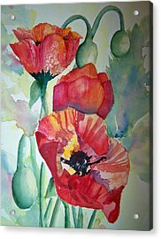 Proud Poppies Acrylic Print by Sandy Collier