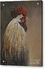 Proud Rooster Acrylic Print by Charlotte Yealey