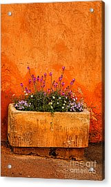 Acrylic Print featuring the photograph Provencal Melody by Olivier Le Queinec